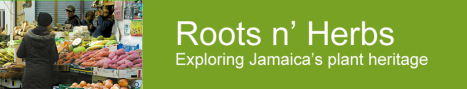 rootsnherbs