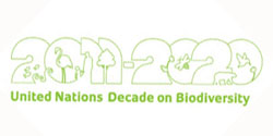 About UN Decade on Biodiversity